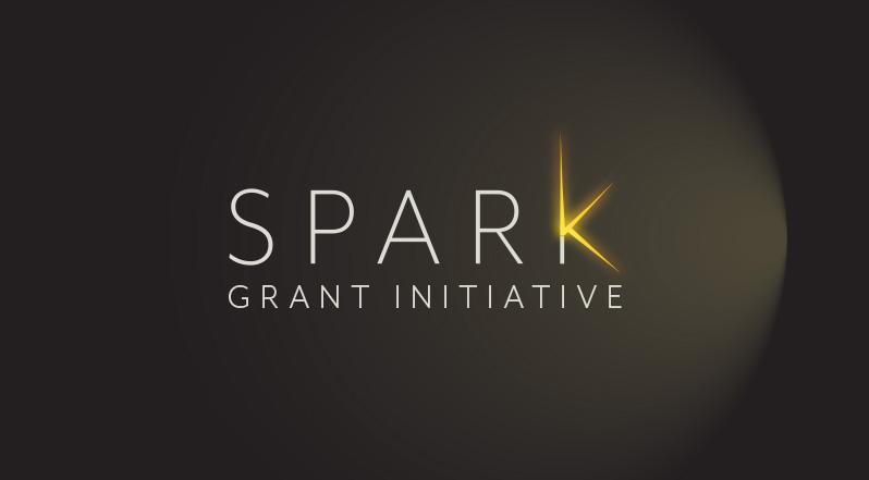 Spark Grant Initiative