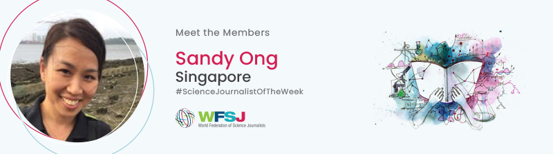 Sandy Ong